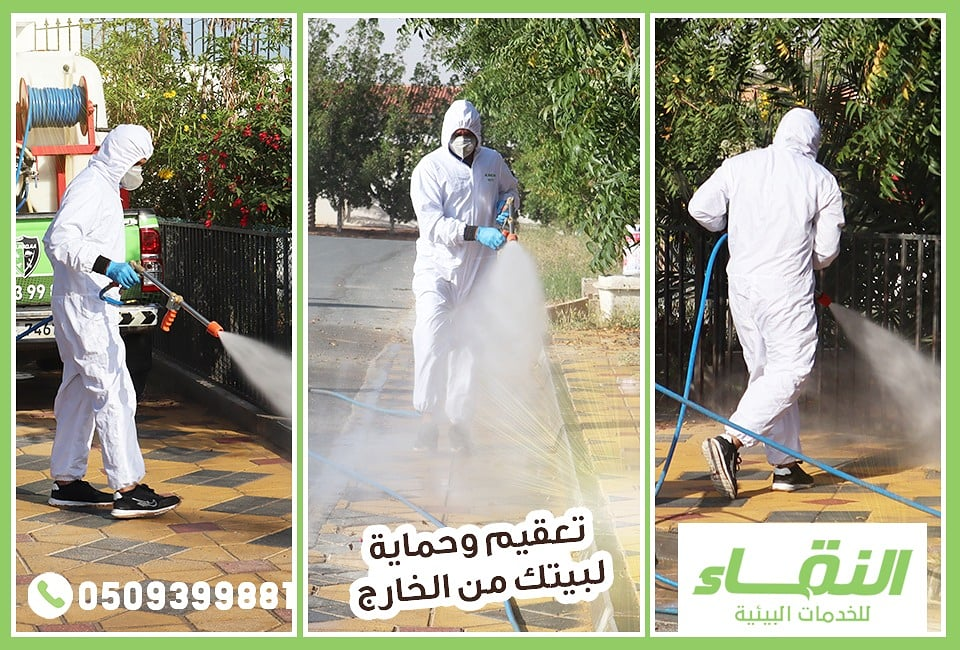 مكافحة حشرات راس الخيمة , شركات مبيدات راس الخيمة , النقاء لمكافحة الحشرات 5309-cached.jpg