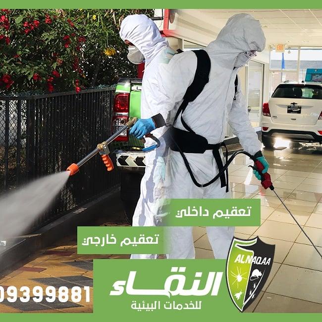 مكافحة حشرات راس الخيمة , شركات مبيدات راس الخيمة , النقاء لمكافحة الحشرات 5310-cached.jpg